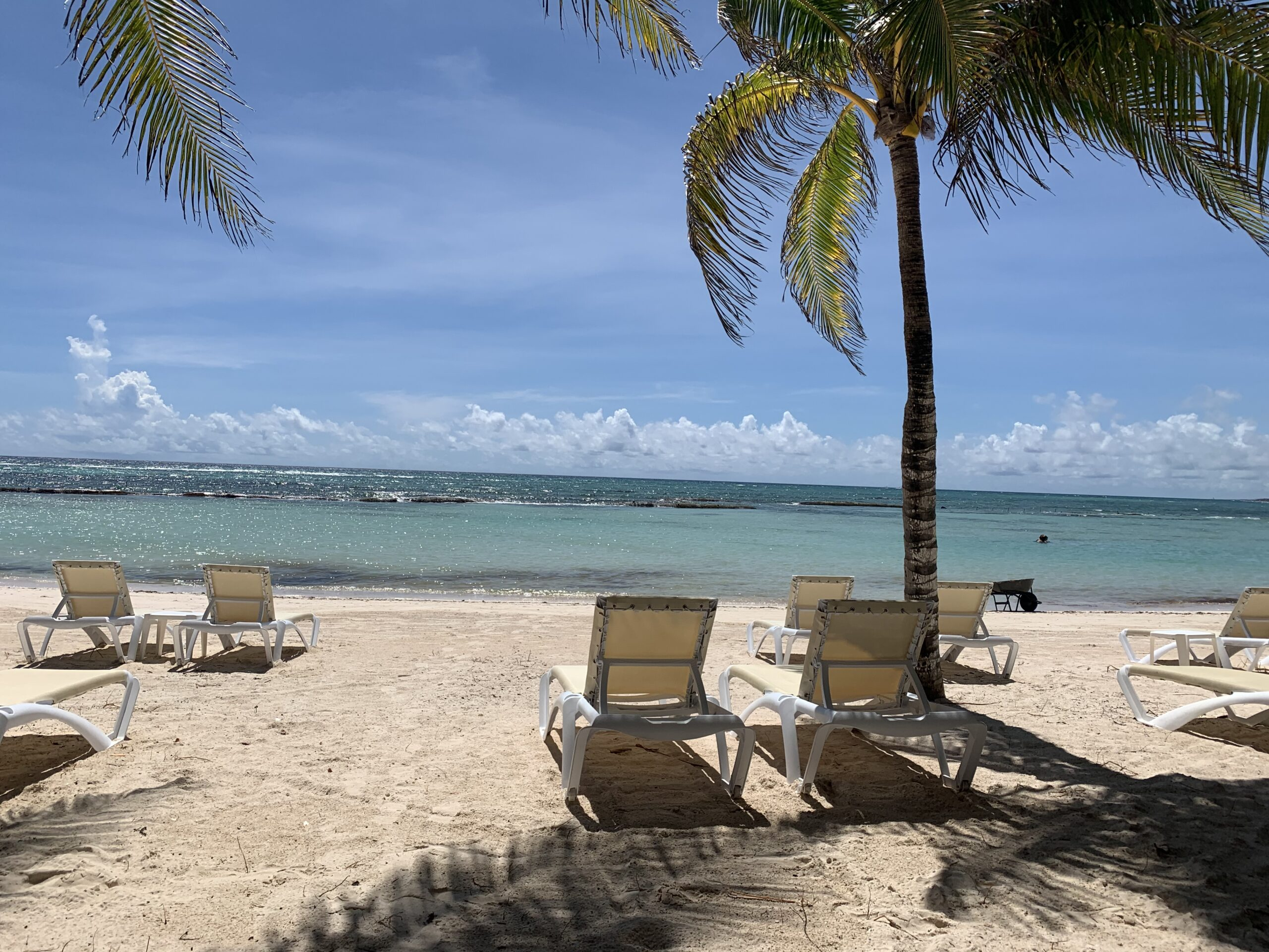 beach loungers and palm trees on the white sand beach in Mexico